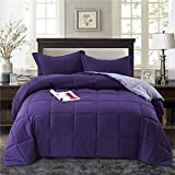 Dark Purple Comforter Queen HIG 3pc Down Alternative Comforter Set- All Season Reversible Comforter with Two Shams -Quilted Duvet Insert with Corner Tabs-Box Stitched -Hypoallergenic, Soft, Fluffy (Full/Queen, Light/Med. Purple)