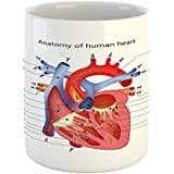 Ambesonne Educational Mug by, Medical Structure of the Hearts Human Body Anatomy Organ Veins Cardiology, Printed Ceramic Coffee Mug Water Tea Drinks Cup, Coral Red Blue