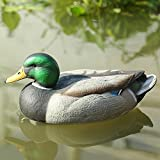 RioRand Highly Realistic Plastic Male Duck Garden Decor Hunting Decoy