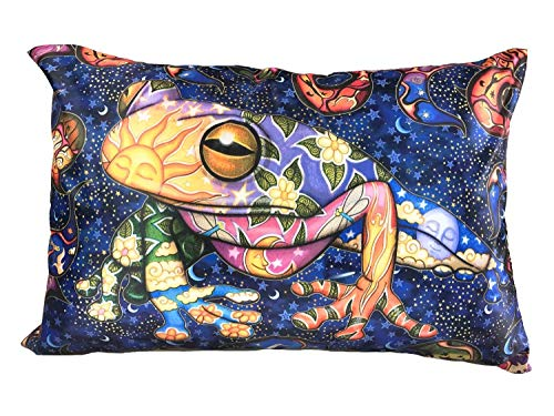 Earth Frog Psychedelic Pillow Case Dan Morris