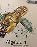 img - for Algebra 1 A Reference Guide K12 Summit Curriculum book / textbook / text book