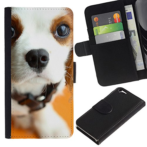 EuroCase - Apple Iphone 6 4.7 - pointer English foxhound jack Russell terrier - Cuir PU Coverture Shell Armure Coque Coq Cas Etui Housse Case Cover