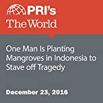 One Man Is Planting Mangroves in Indonesia to Stave off Tragedy | Carolyn Beeler