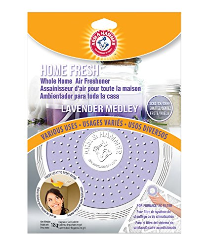 home ac cleaner - 6