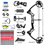 Cheap Compound Bow Archery Package with Hunting Accessories for Adults,Right Handed,19-30″ Draw Length,15-70Lbs Draw Weight,IBO Rate 320fps(Ship from USA Warehouse