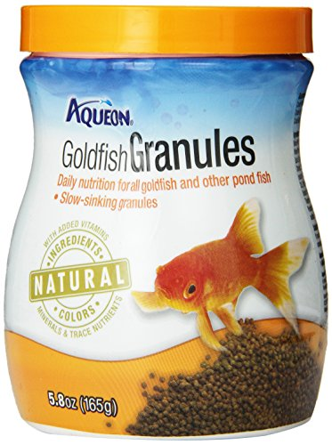 Goldfish natural food - photo#18