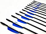 GPP Archery Beginner's First Arrows (30