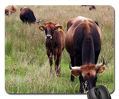 - Mouse Pad - Cattle Cows Pasture Graze Nature Horns Cops