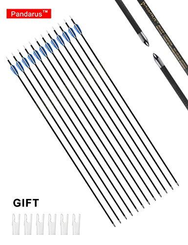 PANDARUS Archery Carbon Target Arrows, 30