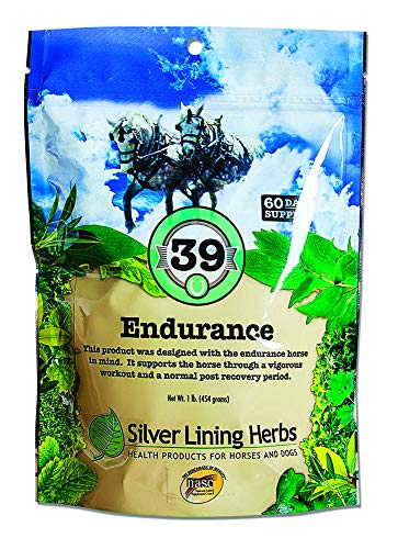 Endurance | Supports the Race, Endurance and Event