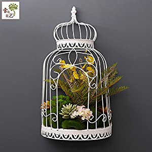 FYYDNZA Living Room Wall Pendant Half Shape Bird Cage Flowerpot Meat Iron Simulation Flower Birdcage Home Living Room Wall Pendant 98