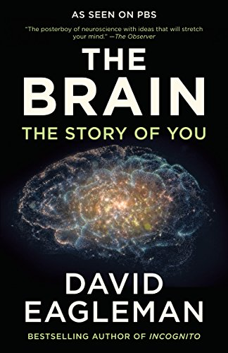 The Brain: The Story of You (Examples Of Quantum Physics In Everyday Life)