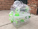 NEW 2 Solid Floor Levels Habitat Hamster Rodent Gerbil Mouse Mice Cage With Large Running Ball On TopClear TransparentGreen