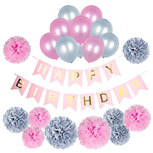 Birthday Decorations Kit with Happy Birthday Banner, Tissue Paper Pom Poms (10 pcs) and Silver Grey and Pink Party Balloons (10 pcs)