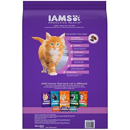 Buy dry food for kittens