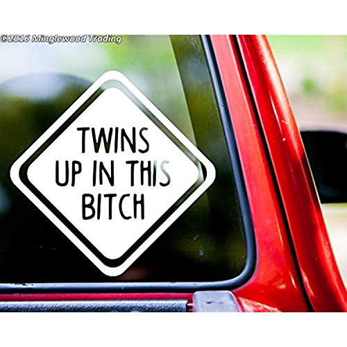 A Good Decals USA Twins UP in This Bitch Vinyl Decal Sticker 6