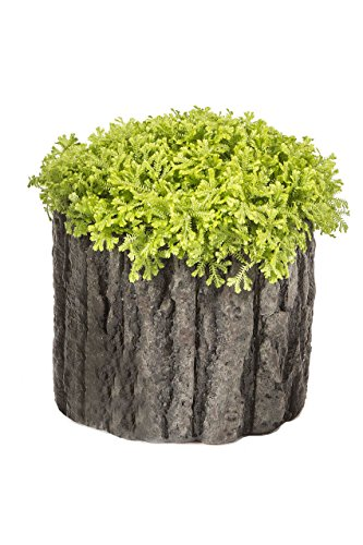 extra large flower pots - 7