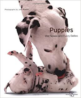 Puppies Wet Noses And Fuzzy Bellies Jane Burton 9788854405387