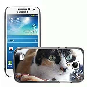 GoGoMobile Slim Protector Hard Shell Cover Case // M00118027 Cat Calico // Samsung Galaxy S4 Mini i9190