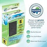 Guardian Technologies GermGuardian Air Purifier