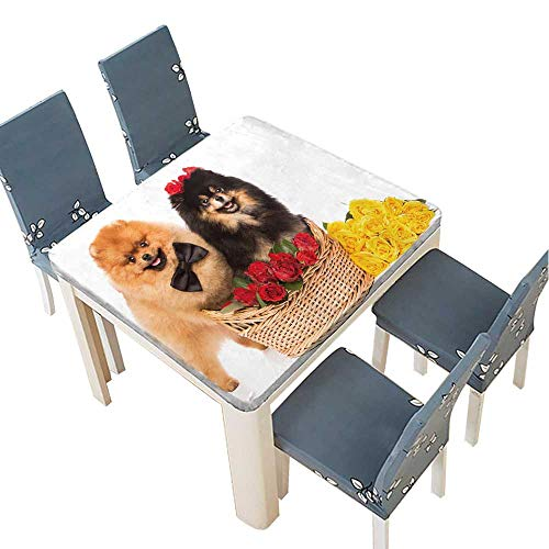 lyester Fabric Tablecloth Pomeranian Spitz Dogs in The Basket with Flowers on White Background Summer & Outdoor Picnics 33.5 x 33.5 INCH (Elastic Edge) ()
