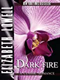 Front cover for the book Dark Fire by Elizabeth Lowell