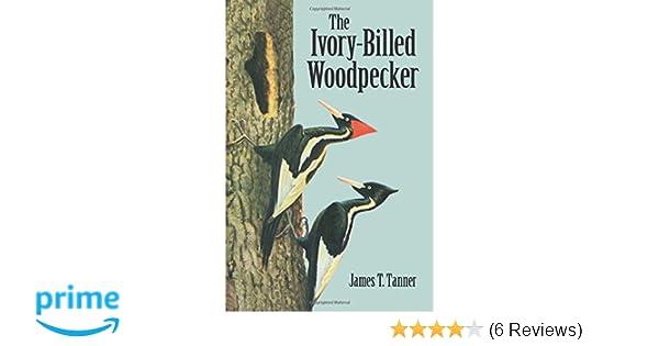 Fantastisk The Ivory-Billed Woodpecker (Dover Birds): James T. Tanner VD-73