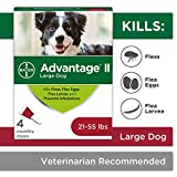 Flea and Lice Treatment for Dogs, 21 - 55 lb, 4 doses, Advantage II Larger Image