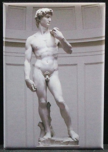 - Statue of David Refrigerator Magnet. Michelangelo