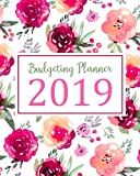 Books : Budgeting Planner 2019: Daily Weekly & Monthly Calendar Expense Tracker Organizer For Budget Planner And Financial Planner Workbook ( Bill ... Book Monthly Bill Organizer) (Volume 5)