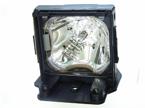 INFOCUS LP815 diamond lamp ()