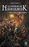 Le Donjon de Naheulbeuk, Roman 5 : Saison 6 - Chaos sous la montagne par Lang