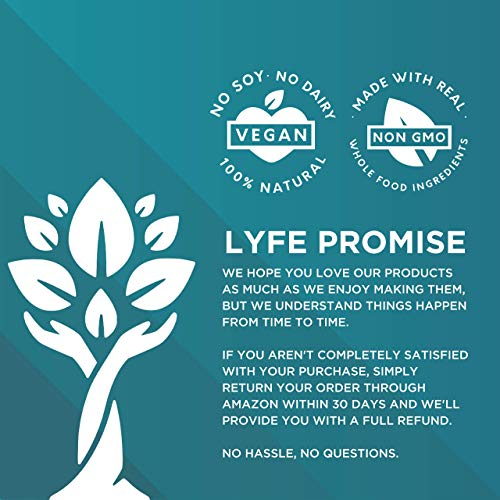 LYFE FUEL Transformation Bundle - All-in-One Meal Replacement Shake + Clean & Lean Post-Workout Recovery - Low Carb Vegan Keto Protein Powder (Large Bags, Essentials Chocolate + Recovery Vanilla) by LYFE Fuel (Image #1)