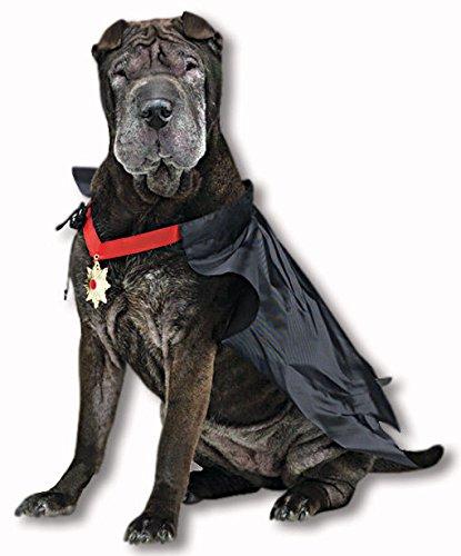 Dracula Traje del perro: Amazon.es: Juguetes y juegos