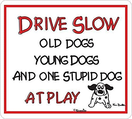 """OLD DOG-YOUNG DOG-SEVERAL STUPID DOGS..PLEASE DRIVE SLOWLY 18/""""x12/"""""""
