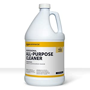 AmazonCommercial Professional All-Purpose Cleaner, 1-Gallon, 1-Pack