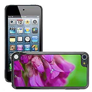 Print Motif Coque de protection Case Cover // M00156502 Flores La flor planta Macro Naturaleza // Apple ipod Touch 5 5G 5th 6 6G 6th