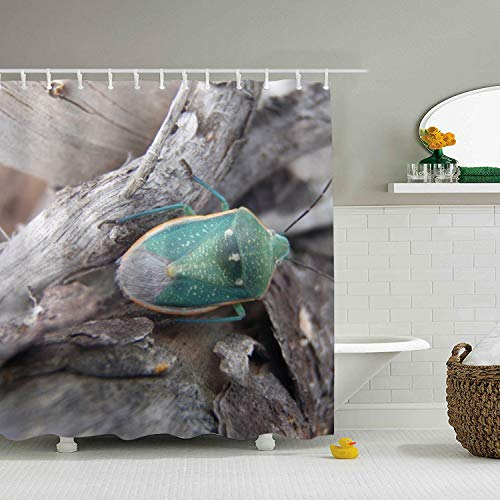 Shower Curtain Animal Stink Bug - Water, Soap, and Mildew Resistant - Machine Washable 71 × 71 -