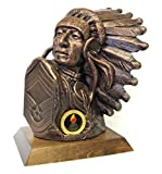 Chief Master Sergeant Bust with Insignia, 9''