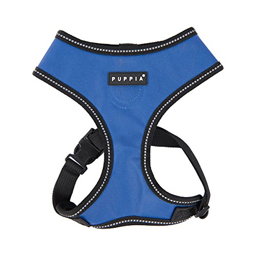 rb 20 harness - 1