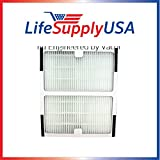 2 Pack Idylis HEPA Replacement Filter IAF-H-100B by Vacuum Savings