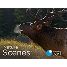 Nature Scenes - Season 1