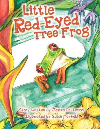 Red Eyed Tree Frog Care - 7