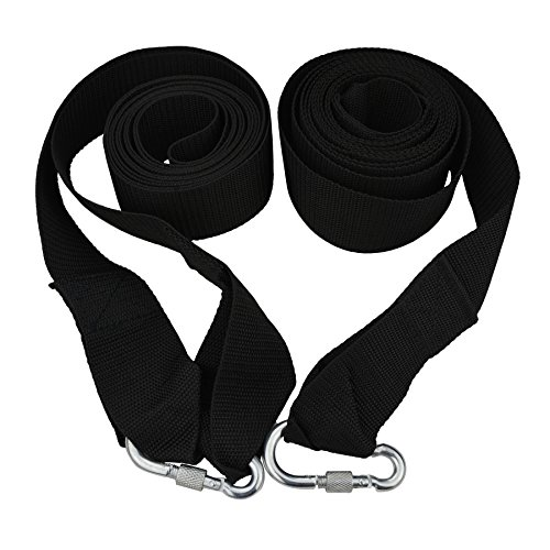 Fishing Chips Hanging 10 Feet Straps product image