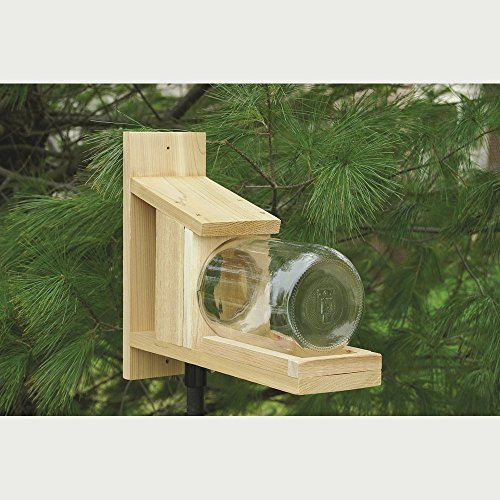Songbird Essentials Squirrel Jar Feeder