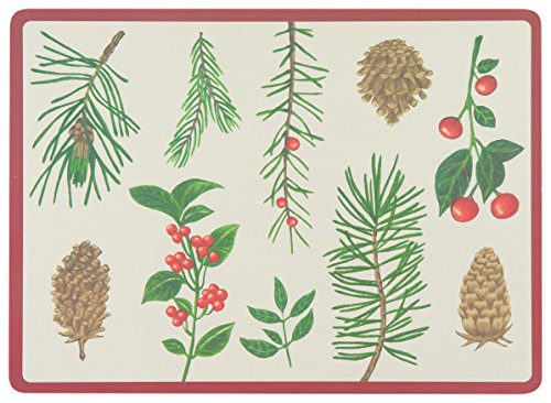 Now Designs Cork Backed Placemats Winters
