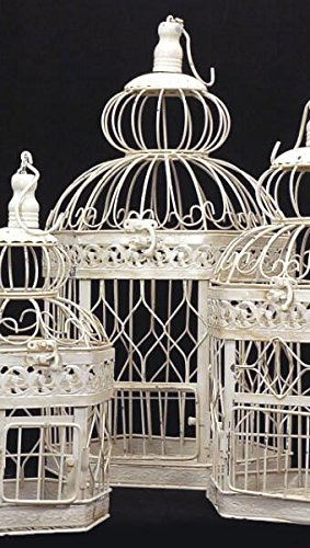 Top 10 recommendation bird cages decorative wooden 2019