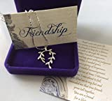 Smiling Wisdom Vine Leaf Pendant Friendship Necklace & Cobra Chain Gift Set - Reason Season Lifetime Friend Message - Appreciation for Her, Best Women Lifetime Friends - BFF - Silver, Platinum Plated