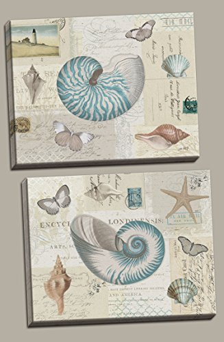 Beautiful Nautilus Sea Shells, Butterflies, Light Houses and Starfish Set by Katie Pertiet; Coastal Decor; Two 14x11in Stretched - Nautilus Shell House