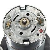 Wind-power-Wind-Driven-DC-Generator-Dynamo-Hydraulic-Test-6V-12V-24V-Motor
